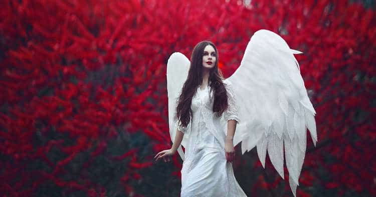 5 Signs from Your Angels You Should Never Ignore (and Why) -
