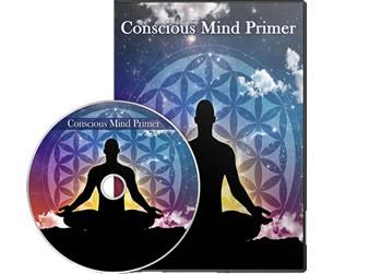 Conscious Mind Primer