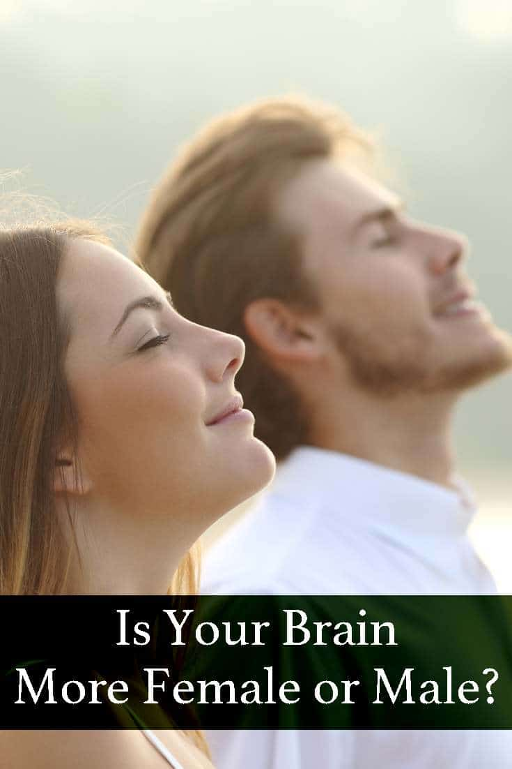 Let's see how you brain works. Take just now this quick and easy quiz and find out if you brain is more female or male!