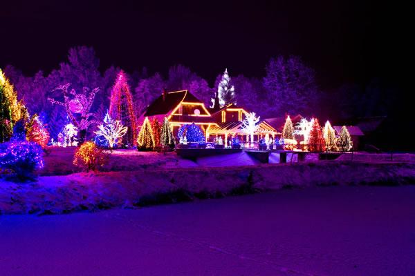 christmas-lights-winter