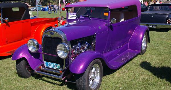 gina_purple_loa