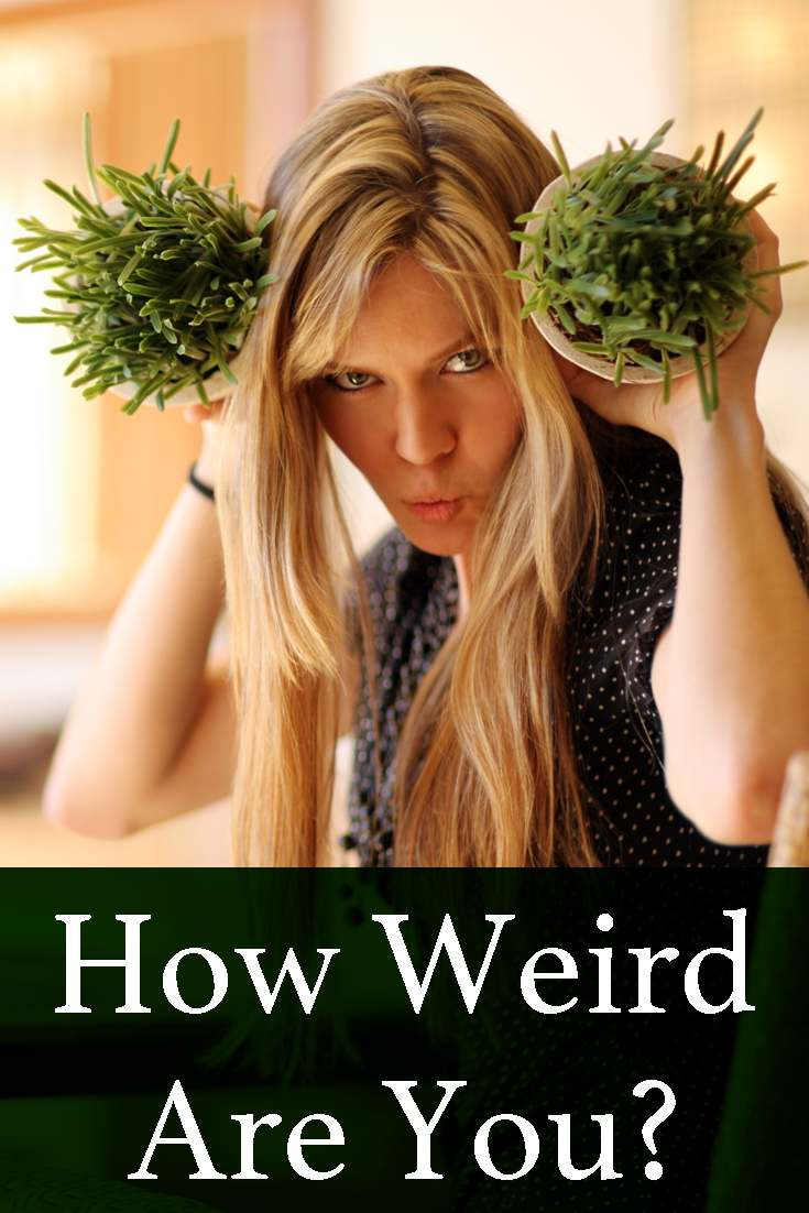How would you define normal? How about weird? Take just now this quick and easy quiz and find out how weird are you!