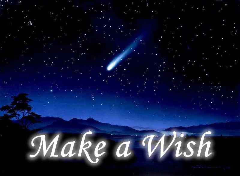 Image result for wishes