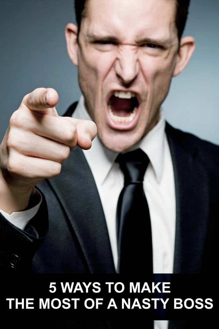 What do you do if you find that your boss has a bad case of nastiness? Here are some solutions!