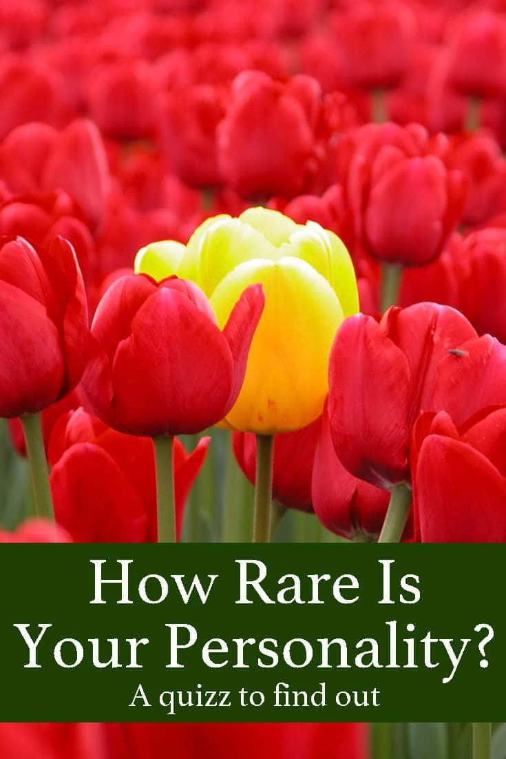 Take just now this quick, easy and funny test to find out how big is your tribe and how rare your personality!