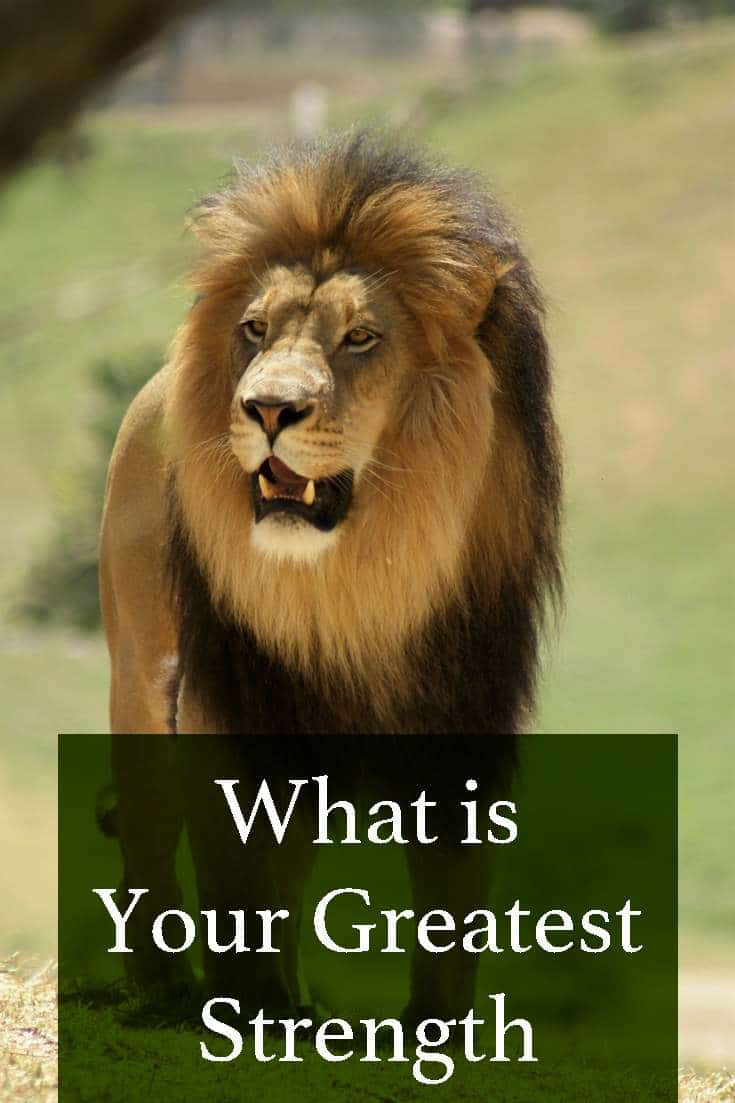 Find out what your greatest strength is by taking this quick quiz.
