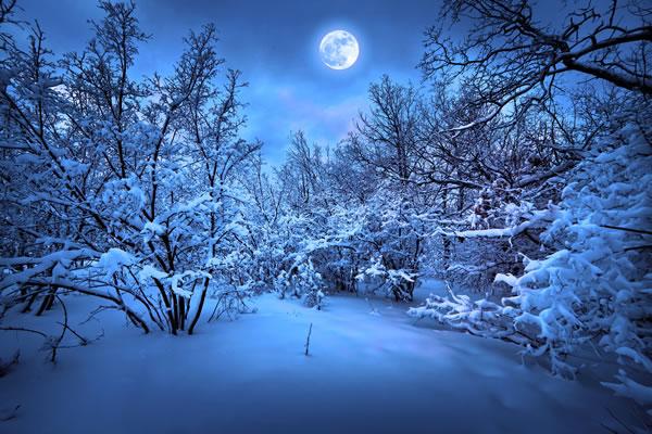 30 Stunning Winter Scenes -